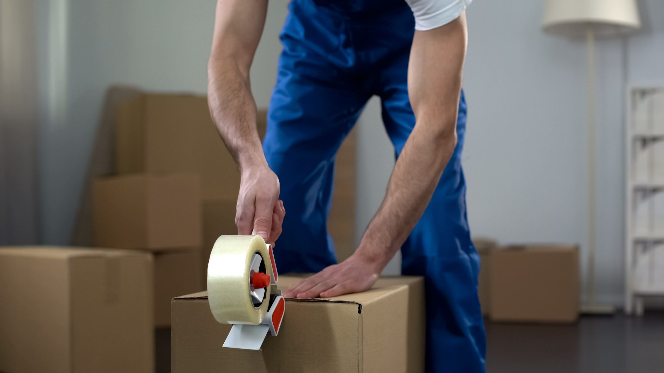 Seven Causes To Love The Brand New Moving Company